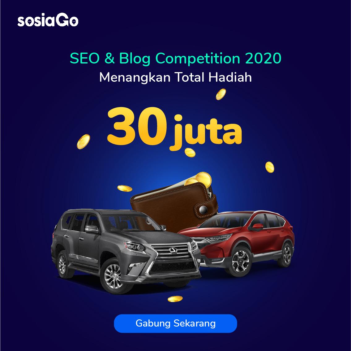 SosiaGo-SEVA-SEO-Banner