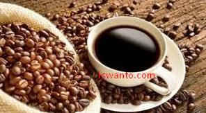 jenis kopi di indonesia